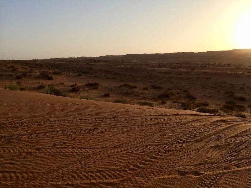 Wahiba Sands | Sharqiyah desert Oman | Arabian desert | dune quad bike tour
